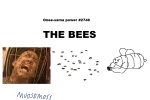 bees not_the_bees! onee-sama poorly_drawn  rating:Safe score:0 user:MooseMoss