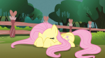 1080p 3/4 crouching eyes_closed fluttershy hiding laying mare pegasus s03e05 scared sweating  rating:Safe score:0 user:Powerpuncher