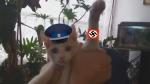 cat edit fur hat headgear human nazi nazi_cat nazi_swastika nazism photo swastika  rating:Safe score:0 user:SamHyde