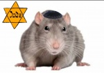 jew jew_rat jude rat star star_of_david tagme text whiskers  rating:Questionable score:0 user:SamHyde