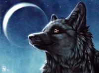 2010 canine moon night nimrais nude portrait sichelmond smile solo yellow_eyes  rating:Safe score:0 user:safefurry