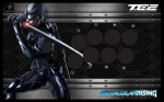 madcatz metal_gear raiden tagme te2  rating:Safe score:0 user:BlazerKen94