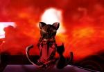 cat cat_effect effect female madotsuki main_character rooftop yume_nikki  rating:Safe score:0 user:SARS