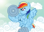 artist:_gettar82 bodybuilder muscular_female My_Little_Pony Rainbow_Dash strong weights  rating:Questionable score:1 user:sugarcakes1020