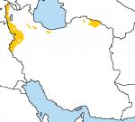 ethnicity iran kurdish kurds middle-east  rating:Questionable score:0 user:AyyubTheMapper
