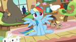 animal annoyed bunny butterfly chicken chipmunk expression front mare pegasus picture rainbow_dash s03e13 seal sitting snake solo squirrel wings_up worried  rating:Questionable score:0 user:Pix3M