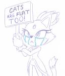 blaze_the_cat cat cry crying edit feline lalieri_(artist) lewd meme meme_anon safe tears title  rating:Safe score:0 user:SoshYosh