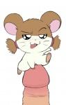 anthro female hamster hamtaro macro sparkle  rating:Explicit score:0 user:trashpanda