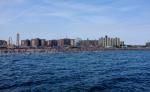 coney_island new_york  rating:Safe score:0 user:yoshizillarhedosaurus